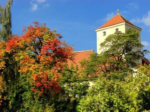 Friedbergs Altstadt im herbstlichen Gewande
