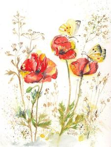 19980516 Mohnblten mit Schmetterling Aquarell