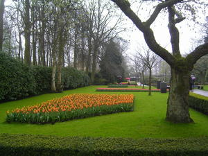 Rundgang ber den Keukenhof