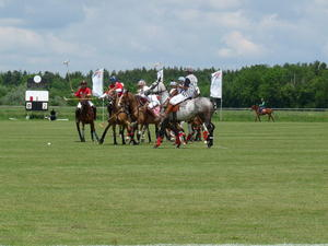 Polo - Texas Trading Trophy  vom 29. - 31.05.2009