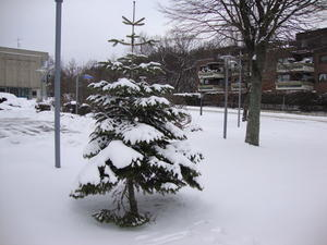 Der Winter 2010 in Laatzen