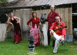 Flamenco-Workshop im Flamenco Camp Birkenried