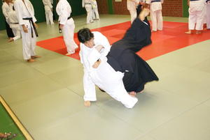 1. Shibu Taikai DNBK Germany Branch in Uerdingen - mit dabei Bushido-Kai des SV Erlingen