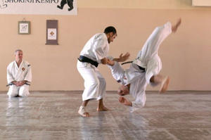 Shorinji Kempo: Trainingscamp in der Landeshauptstadt