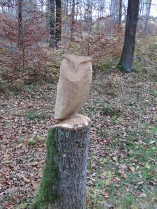 Ein 2. Holztier am Edelweissweg