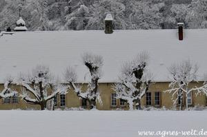 Haus Mark im Winter