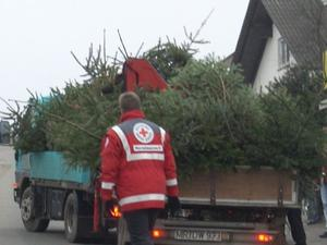 Weihnachtsbaumsammlung in Gladenbach-Mornshausen