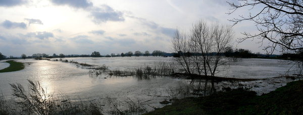 Leine-Hochwasser Bordenau, 'Am Leineufer'