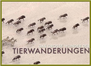 Fr Euch gelesen: Das groe Wunder der Tierwanderungen