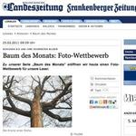 Baum des Monats: Foto-Wettbewerb der Waldeckischen Landeszeitung und Frankenberger Zeitung
