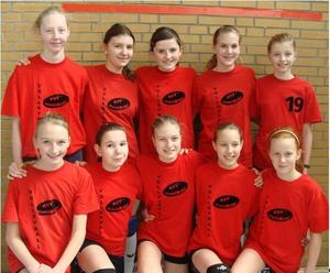 Die besten Volleyballjugendteams zu Gast bei den Sportfreunden Aligse