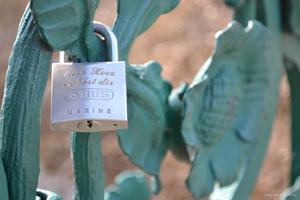 'Liebesbrcke' im Maschpark - Schlsser als Zeichen fr die ewige Liebe?