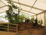 27.05.: Bepflanzung des Dioramas
