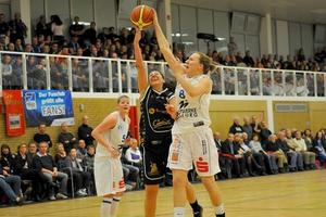 Blue Dolphins beenden basketballfreie Zeit