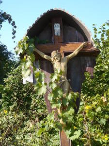 christus im weinberg