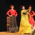 Flamenco- die wilde Seele Andalusiens im Wittelsbacher Land