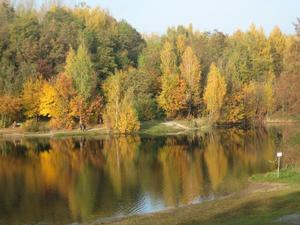 Herbst in Pahna