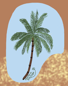 14. Trchen Adventskalender 2011 - Palme im Wind