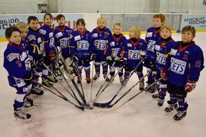 Gelungenes Heimturnier der SCL Bambini B Junior Jets am 5.2.2012.