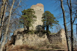 Ruine Alt-Bodman