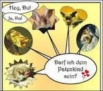 Fledermaus-Paten gesucht!