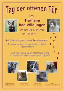 Tierheim Bad Wildungen - Wir laden ein, zum Tag der offenen Tr