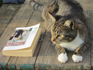 Chuzpe - Der Buchtitel und diese Katze - wie passend!