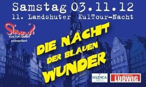 Die Nacht der blauen Wunder in Landshut