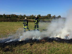 Feuerwehr Ebsdorfergrund: Flchenbrand mit starker Rauchentwicklung in Ebsdorf