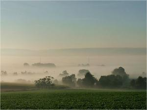 Morgennebel im Ebsdorfergrund