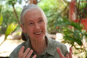 Jane Goodall : Stories and Music from her Life's Journey - Tollwood Winterfestival 2012
