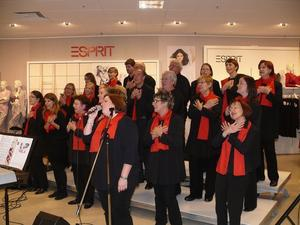 Laatzen Gospel Singers beim Light Night Shopping in Hildesheim