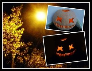 Hell und Dunkel - Krbis zu Halloween 2012 !