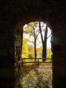 Bunt sind noch die Wlder: Goldener November im Hinberschen Garten (Kloster Marienwerder)