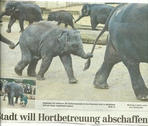 Innovatives Hannover: Hort zu, 'Jungtalente' in den Zoo