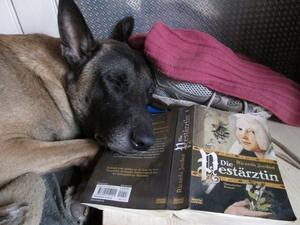 Nach der Gassirunde-lesen & relaxen ;-)