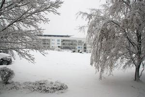 Wintereinbruch in Donauwörth (Parkstadt)