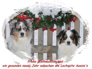 Ein friedvolles Weihnachtsfest und ein gesundes Neues Jahr euch Allen!