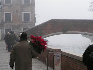 Sterne in Venedig