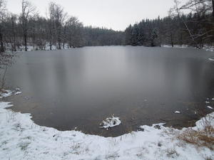 Wellenburger Weiher im Winter
