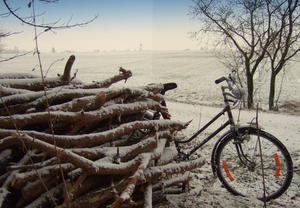 Winterimpression am 'Ehinger Schlagholz' mit Holzmachen und Fahrradfahren ... im Hintergrund die Pfarrkirche St. Laurentius