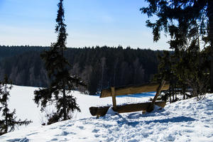 Harz/Hasselvorsperre