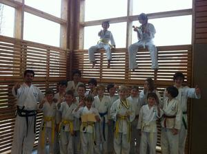 TWIN Taekwondo WOLFSCAMP fr Kinder und Jugendliche