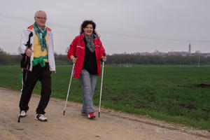 Friedberger Nordic Walking-Parcours startet im Mai