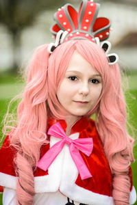 Animuc 2013