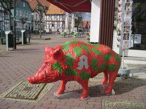 Wildschweine? Wildschweine!