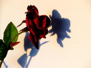 Licht und Schatten 2