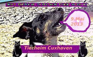 Tierische Gedichte und Geschichten im Tierheim Cuxhaven