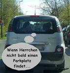 STAU-Probleme ;)