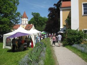 Elfenfestival auf Schloss Blumenthal